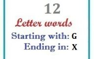 Twelve letter words starting with G and ending in X