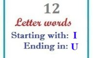 Twelve letter words starting with I and ending in U