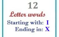 Twelve letter words starting with I and ending in X