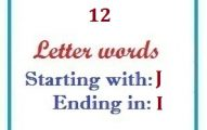 Twelve letter words starting with J and ending in I
