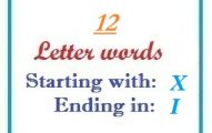 Twelve letter words starting with X and ending in I