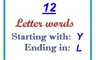 Twelve letter words starting with Y and ending in L