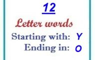 Twelve letter words starting with Y and ending in O