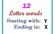 Twelve letter words starting with Y and ending in X