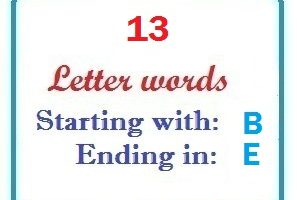 Thirteen letter words starting with B and ending in E