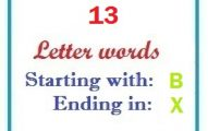 Thirteen letter words starting with B and ending in X