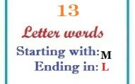 Thirteen letter words starting with M and ending in L