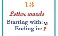 Thirteen letter words starting with M and ending in P