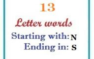 Thirteen letter words starting with N and ending in S