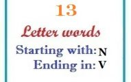 Thirteen letter words starting with N and ending in V