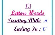 Thirteen letter words starting with S and ending in C