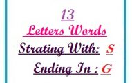 Thirteen letter words starting with S and ending in G