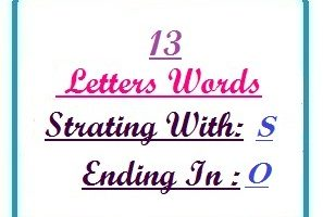 Thirteen letter words starting with S and ending in O