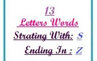 Thirteen letter words starting with S and ending in Z