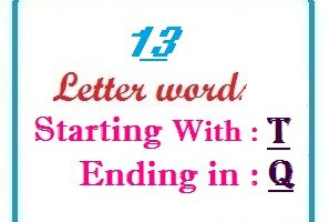 Thirteen letter words starting with T and ending in Q