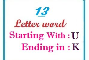 Thirteen letter words starting with U and ending in K