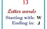 Thirteen letter words starting with W and ending in J