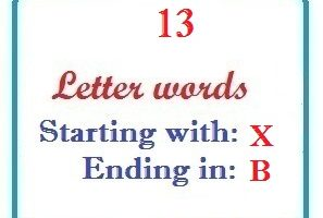 Thirteen letter words starting with X and ending in B