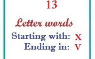 Thirteen letter words starting with X and ending in V