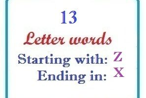 Thirteen letter words starting with Z and ending in X