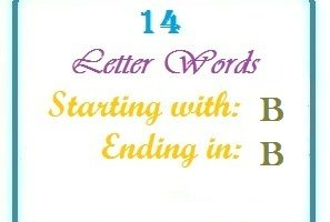 Fourteen letter words starting with B and ending in B