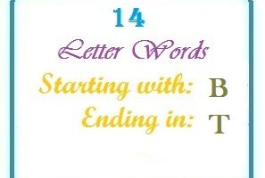 Fourteen letter words starting with B and ending in T