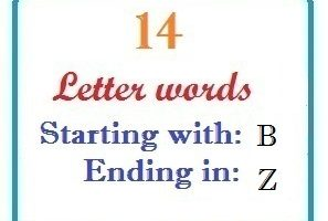 Fourteen letter words starting with B and ending in Z