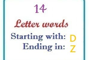 Fourteen letter words starting with D and ending in Z