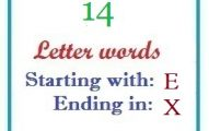 Fourteen letter words starting with E and ending in X