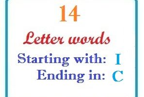 Fourteen letter words starting with I and ending in C