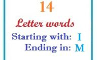 Fourteen letter words starting with I and ending in M
