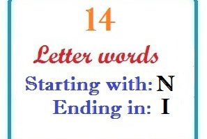 Fourteen letter words starting with N and ending in I