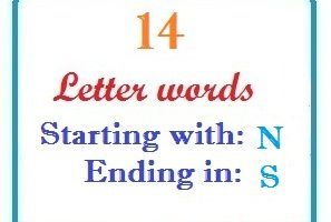 Fourteen letter words starting with N and ending in S