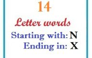Fourteen letter words starting with N and ending in X