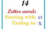 Fourteen letter words starting with O and ending in X