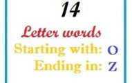 Fourteen letter words starting with O and ending in Z