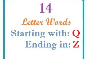 Fourteen letter words starting with Q and ending in Z