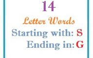 Fourteen letter words starting with S and ending in G