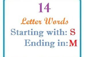 Fourteen letter words starting with S and ending in M