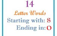 Fourteen letter words starting with S and ending in O