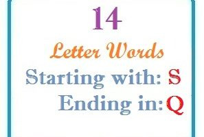 Fourteen letter words starting with S and ending in Q