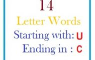 Fourteen letter words starting with U and ending in C