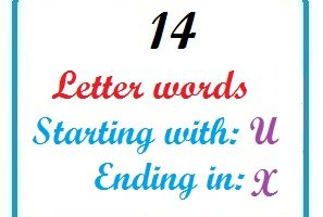 Fourteen letter words starting with U and ending in X