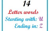 Fourteen letter words starting with U and ending in Z