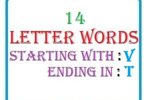 Fourteen letter words starting with V and ending in T