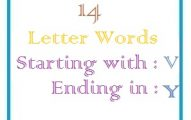 Fourteen letter words starting with V and ending in Y