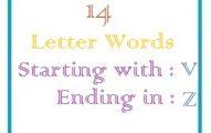 Fourteen letter words starting with V and ending in Z