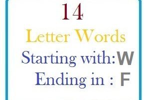 Fourteen letter words starting with W and ending in F