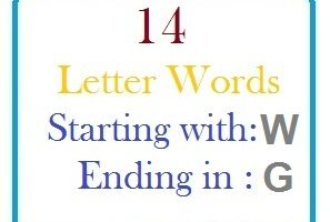 Fourteen letter words starting with W and ending in G