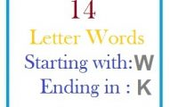 Fourteen letter words starting with W and ending in K